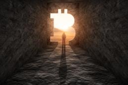 bitcoin exposure